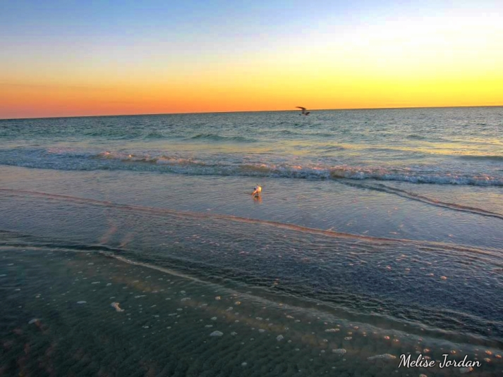 Anna Marie Island Sunset1